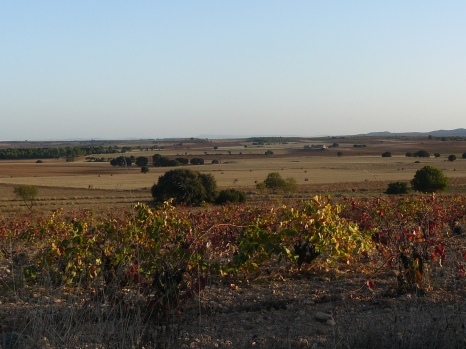 Paisajes de la comarca Utiel-Requena