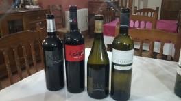 Cata de vinos Nodus, Capellana y Actum