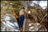 Colocando cajas nido en el restaurante El Azud