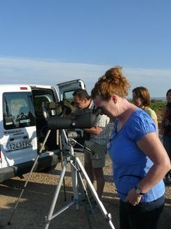 Jay y Salva observando limícolas en El Pontón