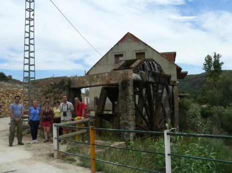 Noria de Casas del Río