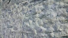 Playa fósil (Galerias excavadas por gusanos marinos)
