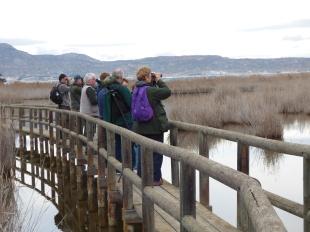 Excursiones a medida Actio Birding 8