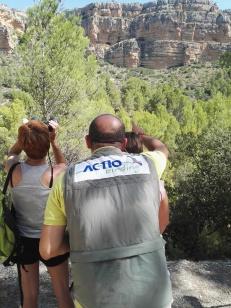 ACTIO Birding.