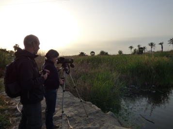 excursiones_birding