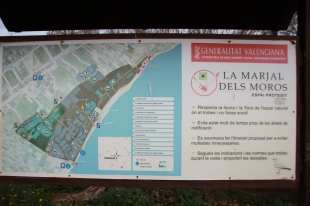 29-01-2017-marjal-dels-moros-1