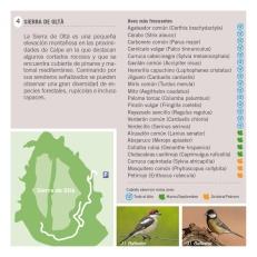 Folleto Birding CALPE- Ruta 3