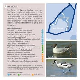Folleto Birding CALPE-Ruta 1